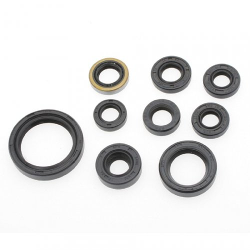 Kit Retentor de Motor DRZ 400 00-09